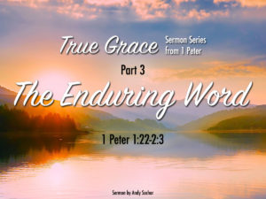 True Grace (Part 3): The Enduring Word