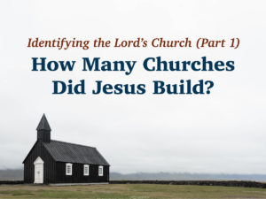 How Many Churches Did Jesus Build?