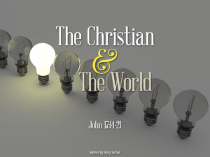 The Christian and the World