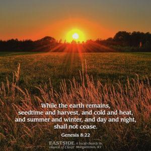 Genesis 8:22